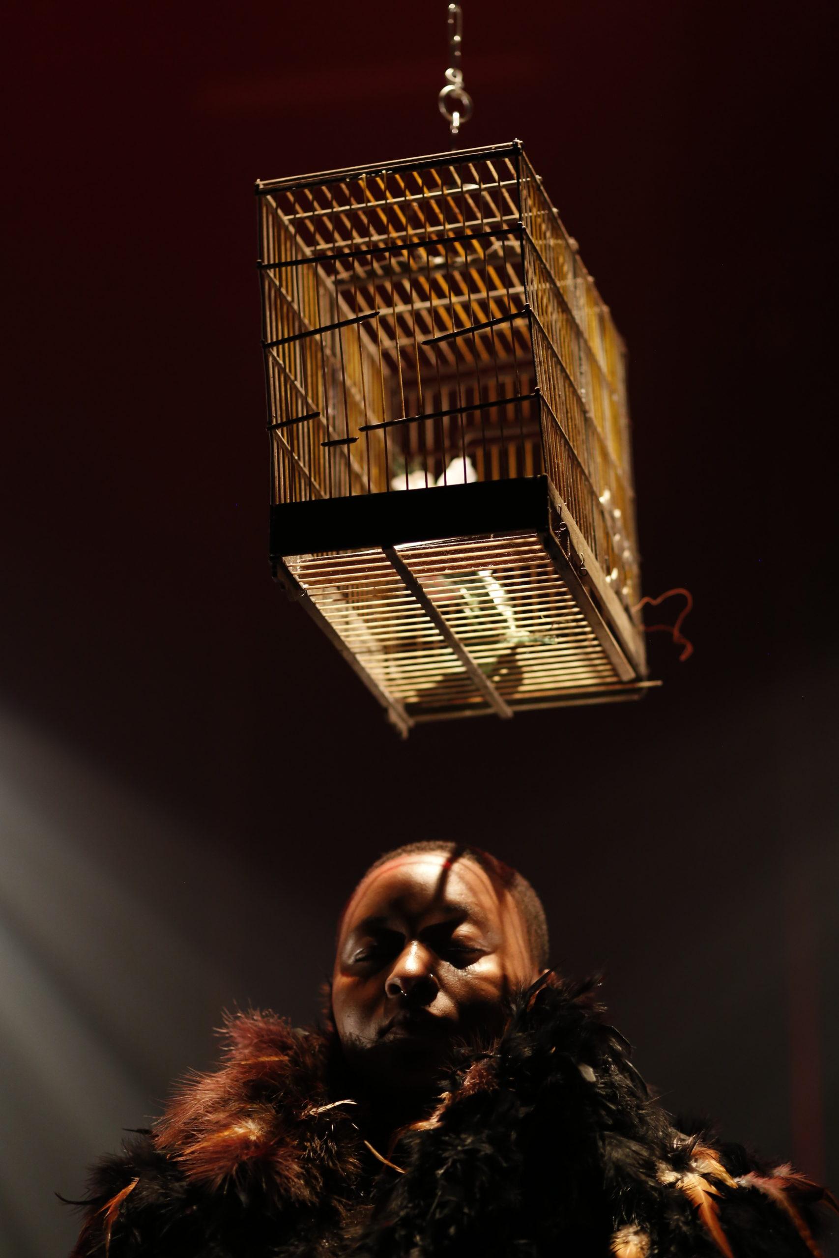 20h35-CommeL'Oiseau-Image:Affiche copie