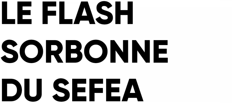 flash sorbonne